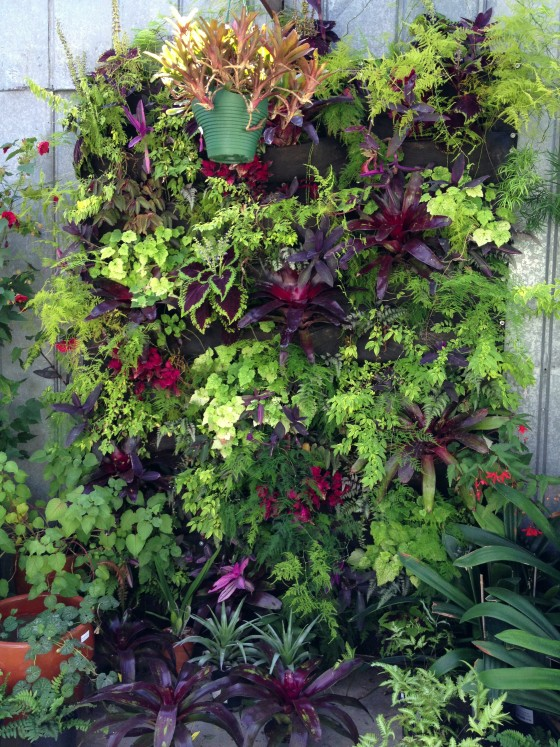 Vertical garden at Dig
