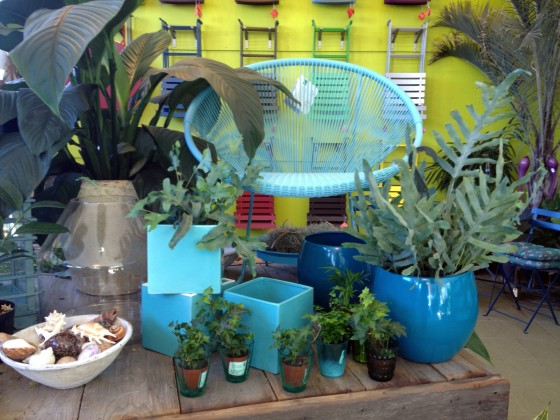 Colorful vignette of pots, plants and furniture