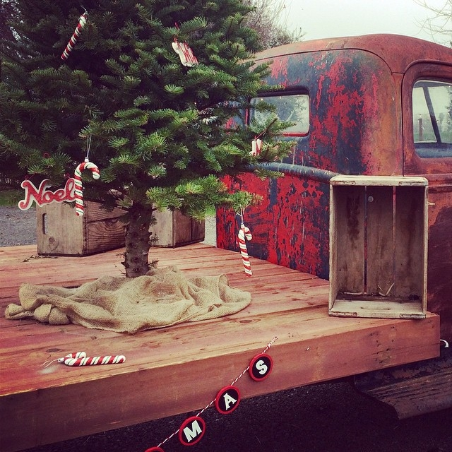 Xmas flatbed at Vierra Farms in West Sacramento. #christmas #vierrafarms #diggingbliss